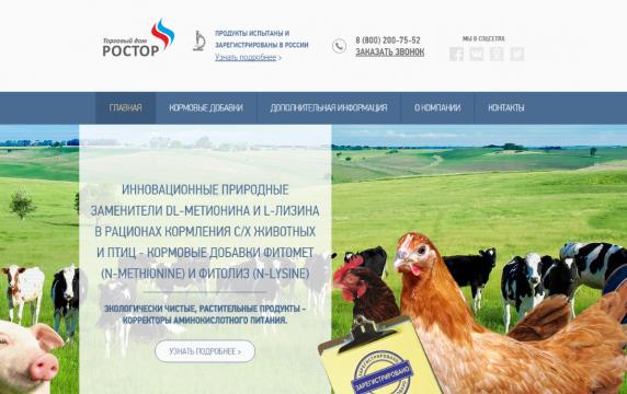 Разработали сайт ТД РОСТОР - фото